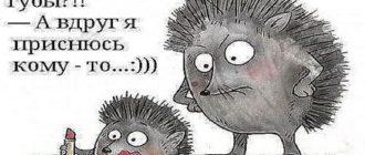 анекдоты свежие смешные до слез читать